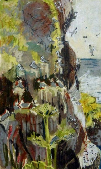 Kittiwake Cliffs, St Abb's Head