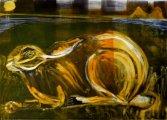 Islay Hare