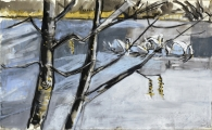 Mute swans, Duddingston Loch