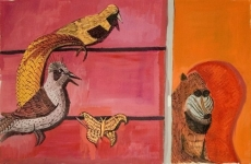 The Baboon, the Birds and the Butterfly