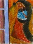 Sad Baboon