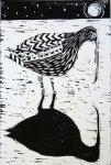 Moonlit Curlew
