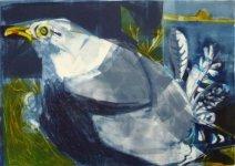 Nesting Herring Gull Dark