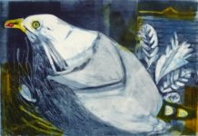 Nesting Herring Gull Pale