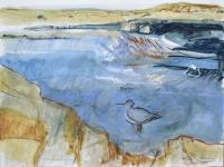 Redshank, Longniddry