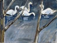 Swans through the trees
