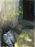 Resting Peregrine