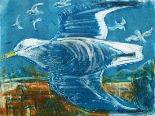 Flying Gull Blue