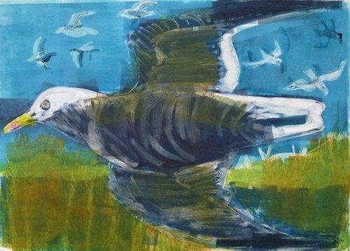 Flying Herring Gull, Inchcolm