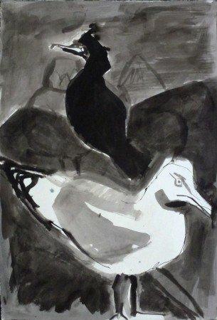 Herring Gull and Shag, Bass Rock