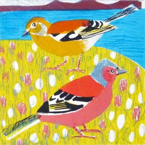Island Chaffinches