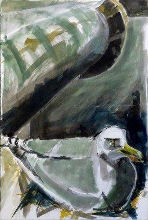 Hot Nesting Gull, Bass Rock