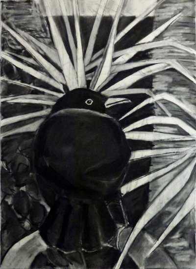 Blackbird in a Palm Tree