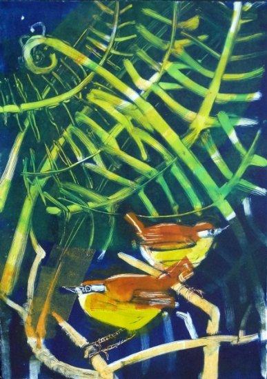 New Zealand Bush Wrens