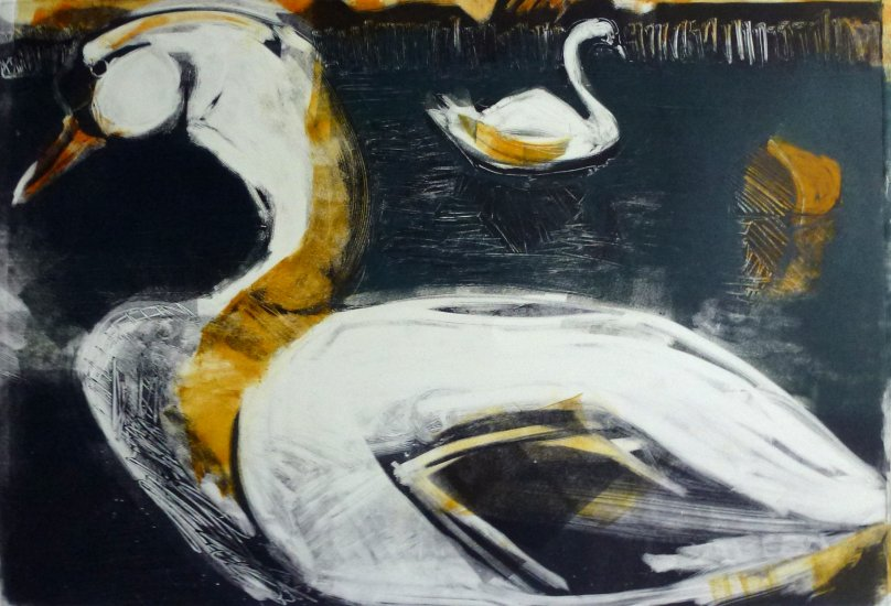 Duddingston Swans