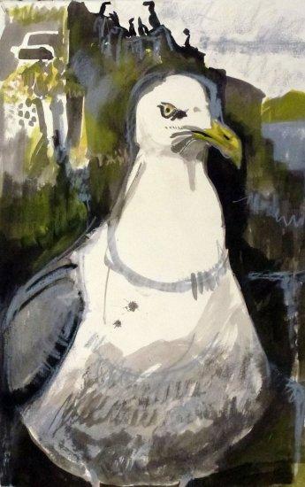 Fidra Gull