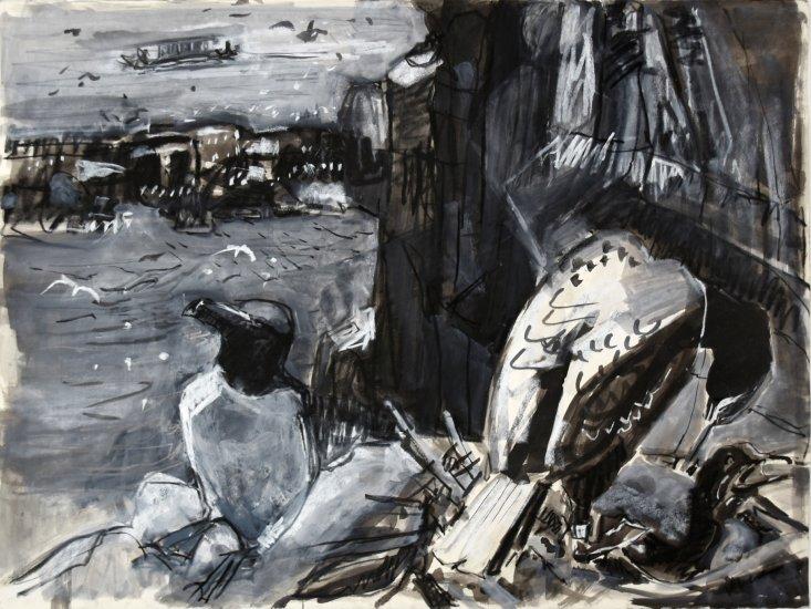 Cliff ledges, Isle of May