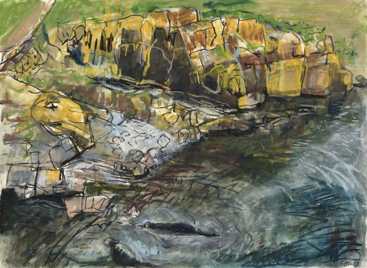 Grey seals, Isle of May