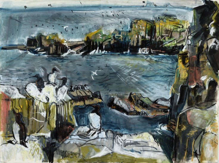 Guillemot cliffs, Isle of May