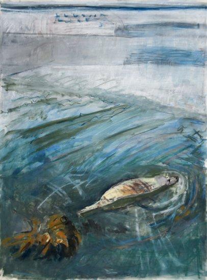 Mooching Seal