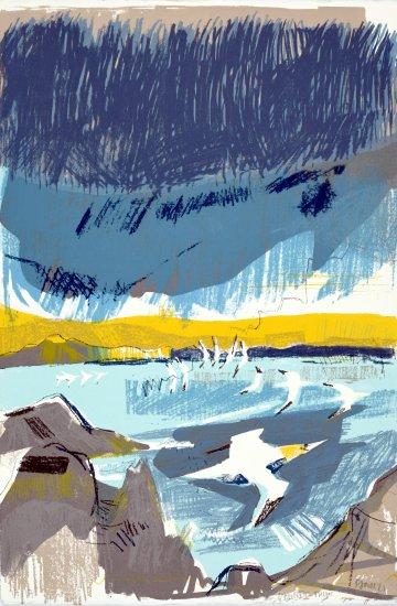 Gannet Flight