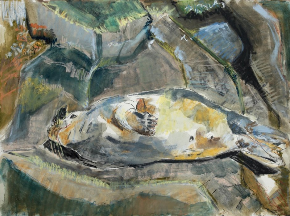 Reclining Seal, mixed media on paper, 56 x 76 cm